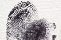 Odcisk palca zatwierdzi zakupy w Google