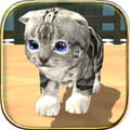 Cat simulator gra
